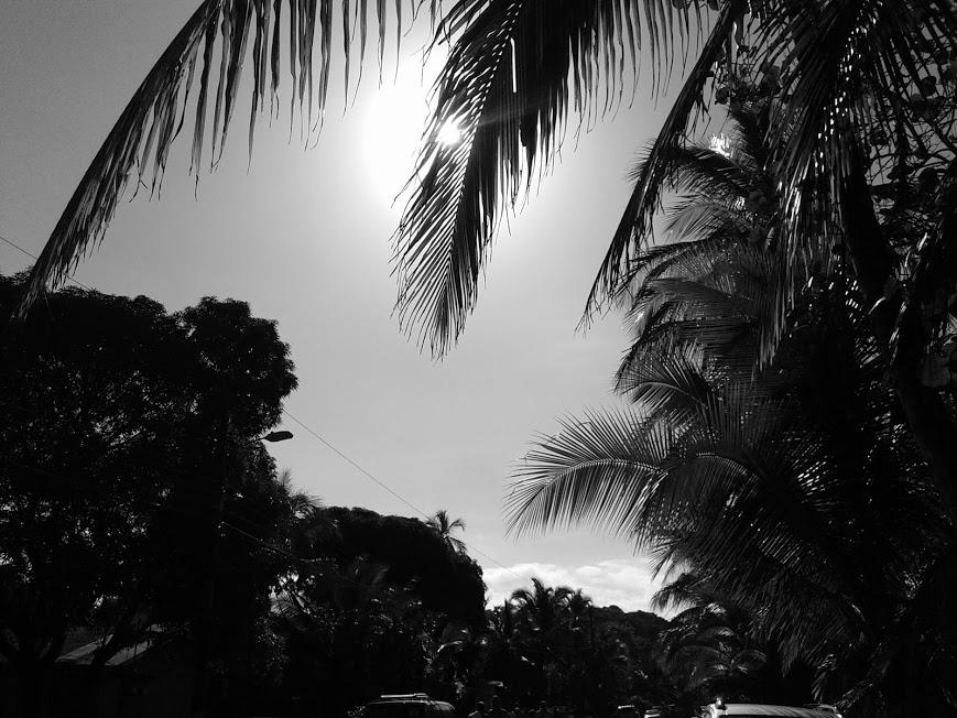 fekete-fehér -éjjel nappal